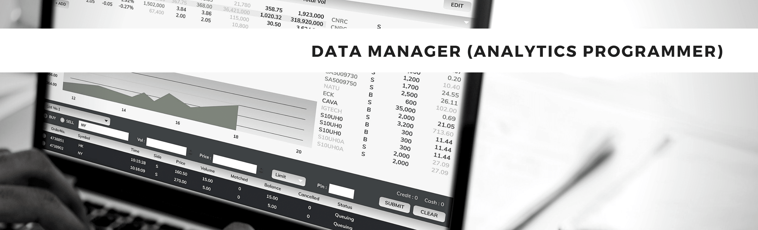SAS Data Manager Analytic Programmer